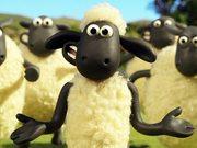 Баранчик Шон 4: Загони овечек домой